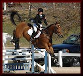 Eventing & Show Jumping Training